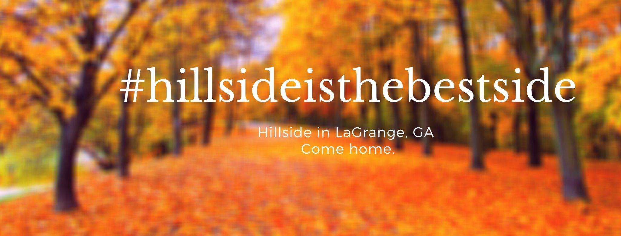White & Orange Blurred Background Autumn Fall Quote Facebook Cover